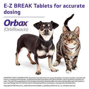 Orbax Oral Suspension 30 mg/ml 20 ml Bottle