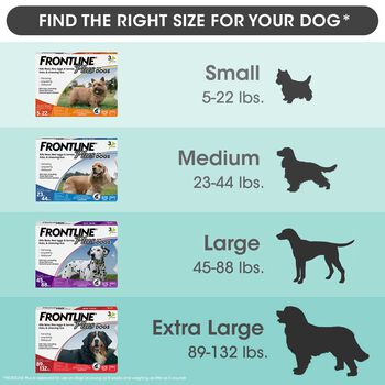 Frontline Plus 12pk Dogs 5-22 lbs