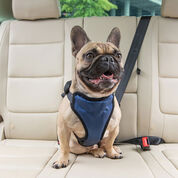 Deluxe Vehicle Safety Harness-product-tile