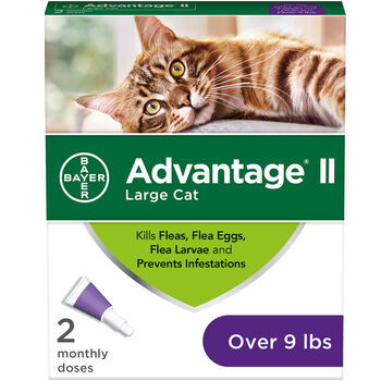 Advantage II 2 pk Cat Over 9 lbs product detail number 1.0