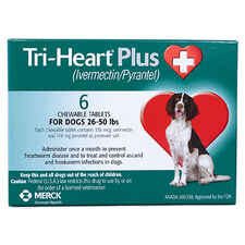 Tri-Heart Plus 12pk Green 26-50 lbs-product-tile