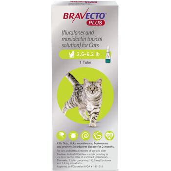 Bravecto Plus 2.6-6.2 lbs 1 pk product detail number 1.0