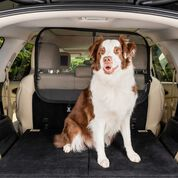 PetSafe Cargo Area Net Pet Barrier-product-tile