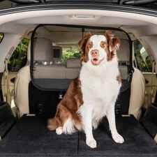 PetSafe Cargo Area Net Pet Barrier-product-tile