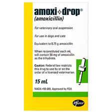 Amoxicillin Drops 50mg/ml 15 ml Bottle-product-tile