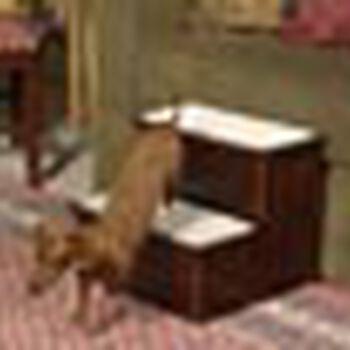 Solvit Mr. Herzher's Pet Stairs with Cherry Finish