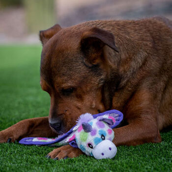 Multipet Ball-Head Unicorn Dog Toy