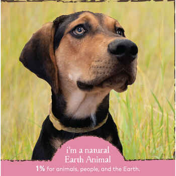Earth Animal Nature's Protection™ Flea & Tick Herbal Collar for Cats