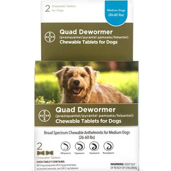 Bayer Quad Dewormer Chewable Tablets for Dogs Medium Dogs 2 ct product detail number 1.0