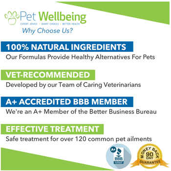 Pet Wellbeing Kidney Support Gold