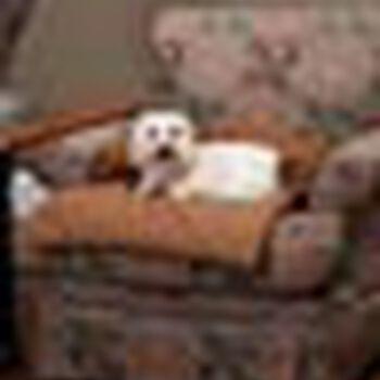 Solvit Sta-Put Bolstered Pet Furniture Protector