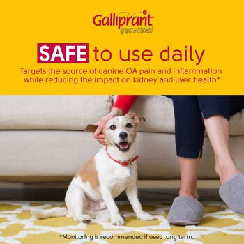 Galliprant 20 mg Tab 30 ct