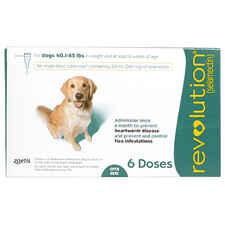 Revolution 6pk Dog 40.1-85 lbs-product-tile