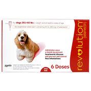 Revolution 6pk Dog 20.1-40 lbs-product-tile