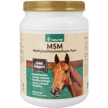 MSM Pure Powder