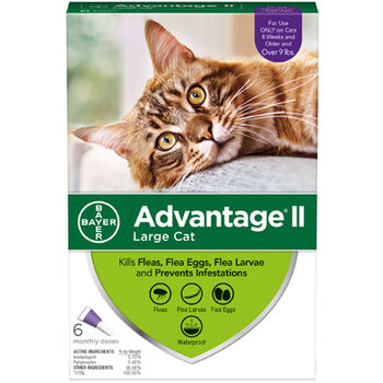 Advantage II 6pk Cat Over 9 lbs product detail number 1.0