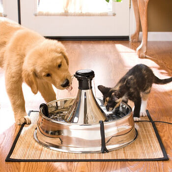 Drinkwell 360 Stainless Steel Pet Fountain Fountain