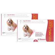 Revolution 12 Pk Dog 20.1-40 lbs-product-tile