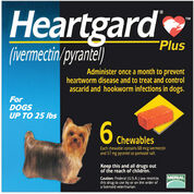 Heartgard Plus Chewables 6pk Blue 1-25 lbs-product-tile