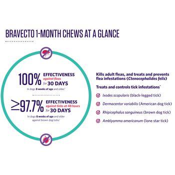Bravecto 1-Month Chews Toy Dog (4.4-9.9 lbs) 1 pk