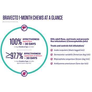 Bravecto 1-Month Chews
