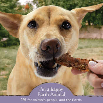 Earth Animal SHINE Herbed Chicken Tenders