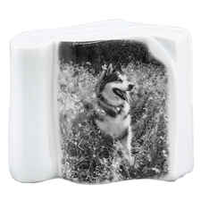 Pet Photo Porcelain Stand Up Collectible-product-tile