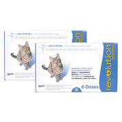 Revolution For Cats Dogs Free Shipping 1800petmeds Category Uuid C4897c1431160dd578e5bd532f