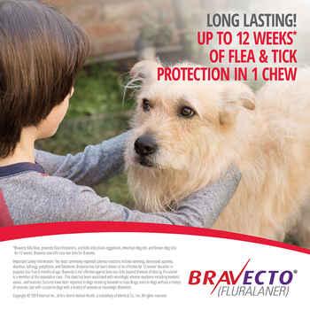 Bravecto Chews 2 Dose Toy Dog 4.4-9.9 lbs