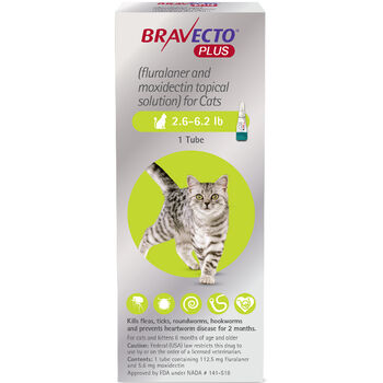 Bravecto Plus 2.6-6.2 lbs 6 pk product detail number 1.0