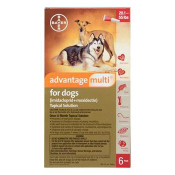 Advantage Multi 6pk Dogs 20-55 lbs product detail number 1.0
