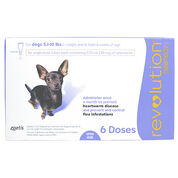 Revolution 6pk Dog 5.1-10 lbs-product-tile