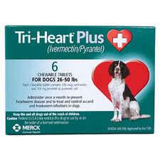 Tri-Heart Plus 6pk Green 26-50 lbs-product-tile