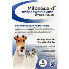 MilbeGuard - Generic to Interceptor-product-tile