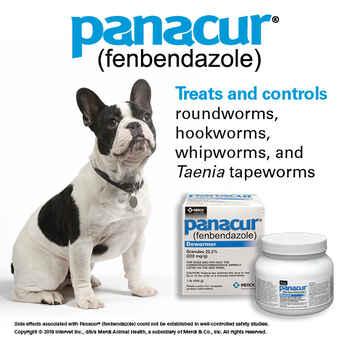 Panacur C Canine Dewormer Three 4 Gram Packages