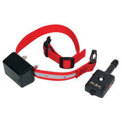 Innotek Dog Training Collar with Remote