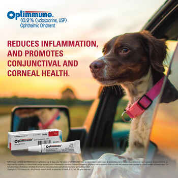 Optimmune Ophthalmic Ointment 0.2% 3.5 gm Tube