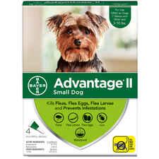 Advantage II 4pk Dog 3-10 lbs-product-tile