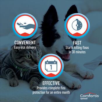 Comfortis 6pk Dogs 10.1-20 lbs or  Cats 6.1-12 lbs
