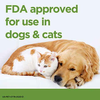 ProZinc Insulin for Cats and Dogs