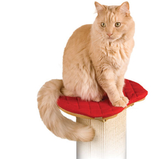 SmartCat Ultimate Cat Scratching Post Pad-product-tile