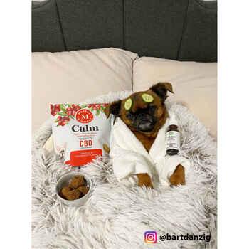 Martha Stewart Calm Chicken And Cranberry Soft Baked Chews