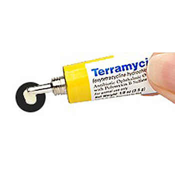Terramycin Ophthalmic Ointment 3.5 gm Tube