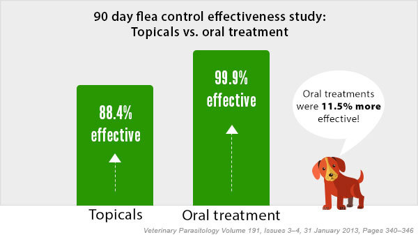 Oral flea treatments are 11.5% more effective than traditional topical treatments