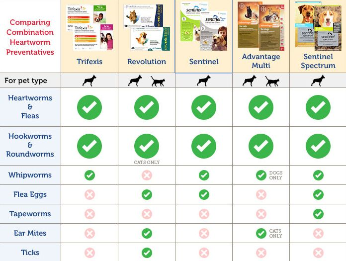 Compare combination heartworm and flea prevention medications