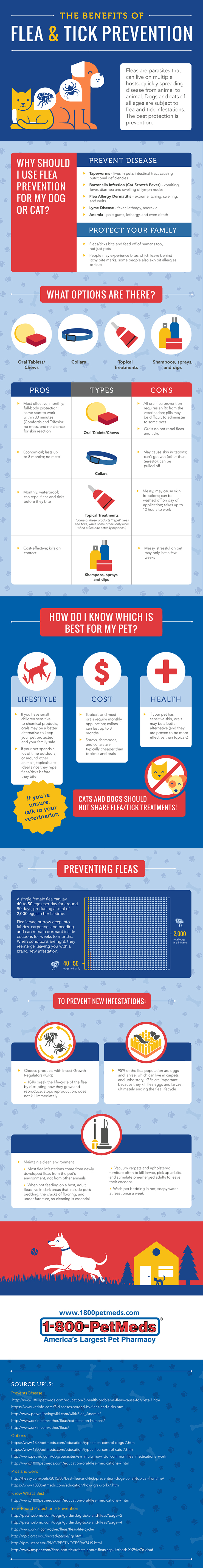 Best Flea and Tick Prevention Infographic
