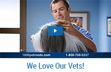 We Love our Vets, opens video player