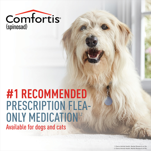 Comfortis is the #1 recommended Rx Flea-only medication for dogs and cats