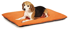 Insect Shield Insect Repellent Reversible Pet Bed Usage