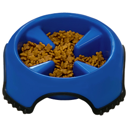 Slow Feed Non-Skid Dog Bowl Usage